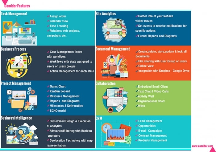 Business Features Infographic