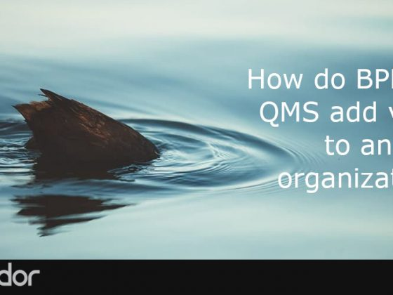 How do BPM and QMS add value to an organization