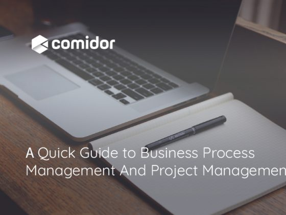 A Quick Guide to Business Process Management And Project Management | Comidor